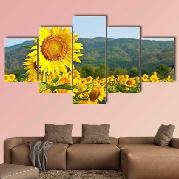 Sunflower Field On Blue Sky Multi Panel Canvas Wall Art 3 Pieces / Medium / Canvas Tiaracle