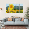 Sunflower Field And Green Mountains Multi Panel Canvas Wall Art 5 Horizontal / Small / Gallery Wrap Tiaracle