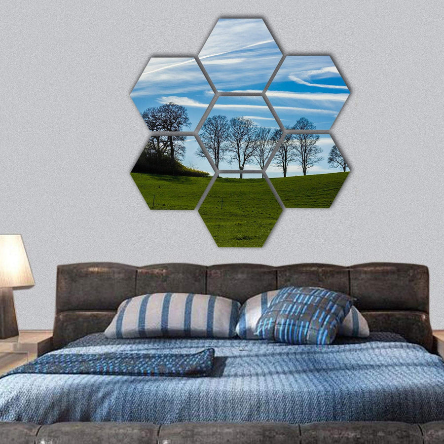 Trees Silhouetted Against A Blue Sky Hexagonal Canvas Wall Art 1 Hexa / Small / Gallery Wrap Tiaracle