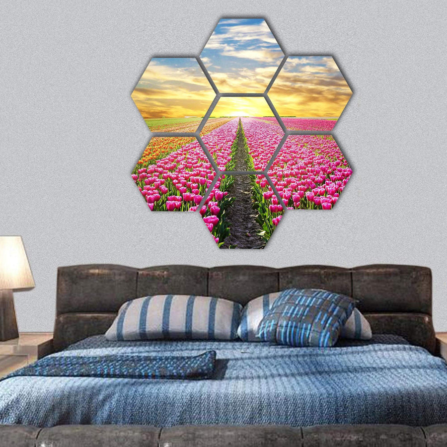 Tulip Field At Sunrise Hexagonal Canvas Wall Art 1 Hexa / Small / Gallery Wrap Tiaracle