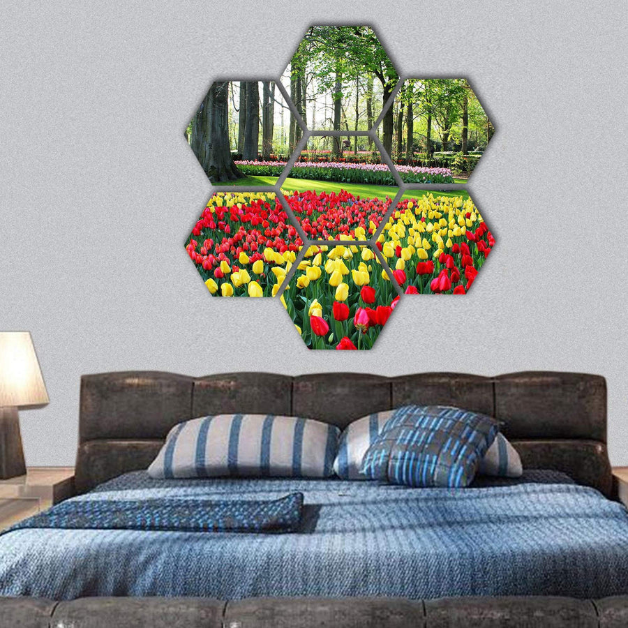 Tulips And Spring Hyacinths In Holland Hexagonal Canvas Wall Art Tiaracle