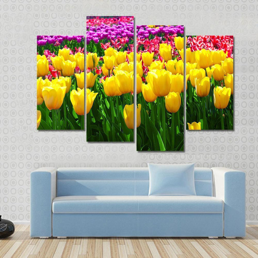 Tulips Field Yellow Flowers Canvas Panel Painting Tiaracle