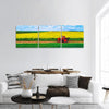 Aerial View Over Agricultural Fields Panoramic Canvas Wall Art 3 Piece / Small Tiaracle