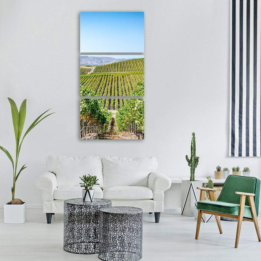 Vineyard in Napa Valley California Vertical Canvas Wall Art Tiaracle