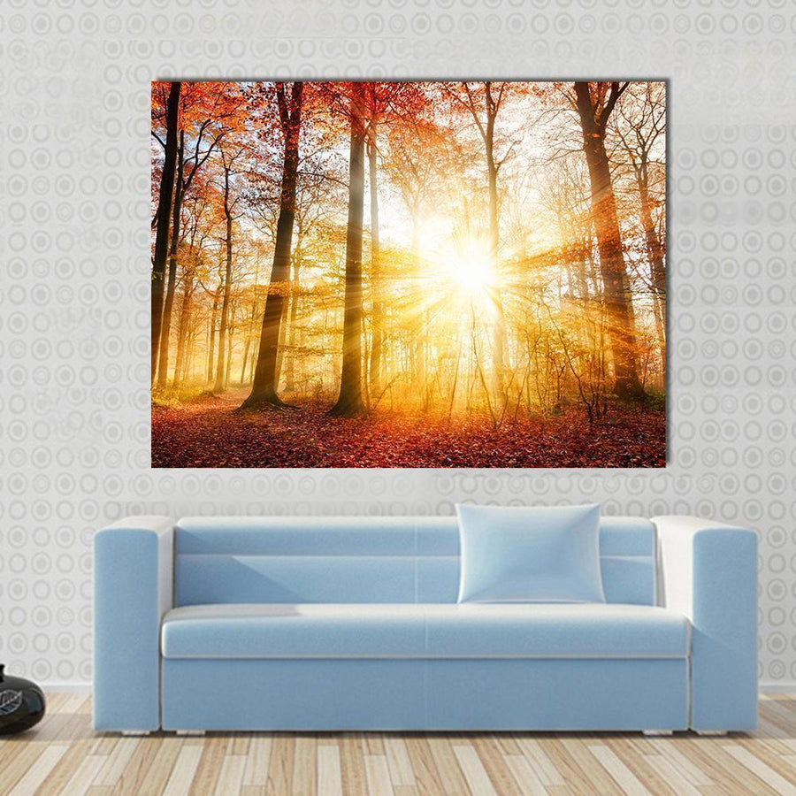 Warm Autumn Scenery In A Forest With The Sun Rays Multi Panel Canvas Wall Art 4 Horizontal / Small / Gallery Wrap Tiaracle