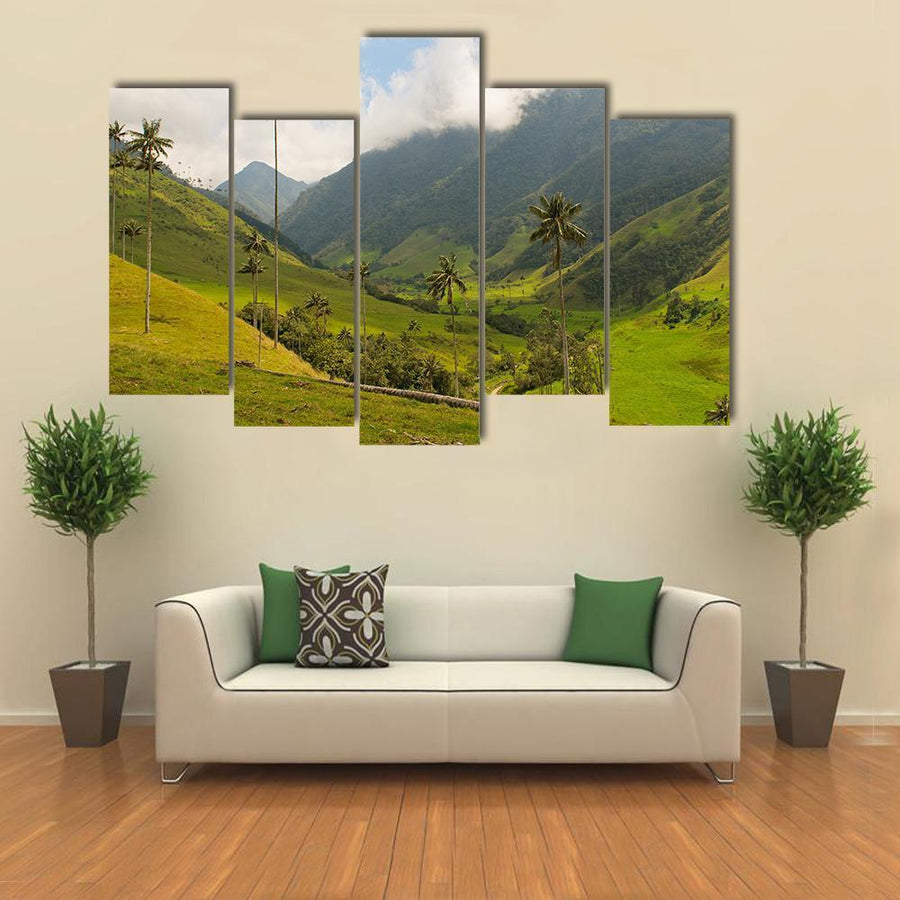 Wax Palm Trees Of Cocora Valley Multi Panel Canvas Wall Art 1 Piece / Medium / Canvas Tiaracle