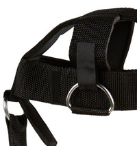 1500H Schiek Adjustable Head Harness with Chain Padding Close Up