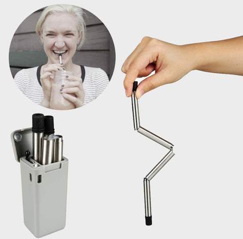 Collapsible Stainless Steel Straw (2 pcs set)