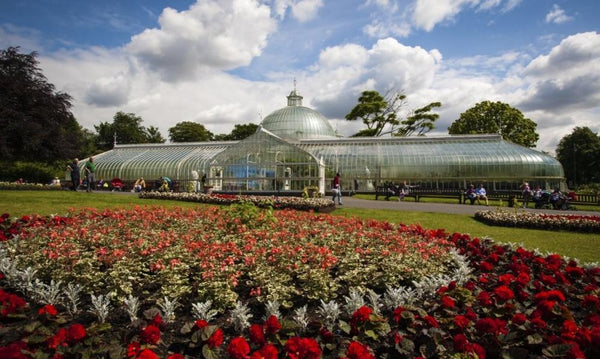 Glasgow Botanic Gardens - Natural Perfumery, Sun 8th September 2019