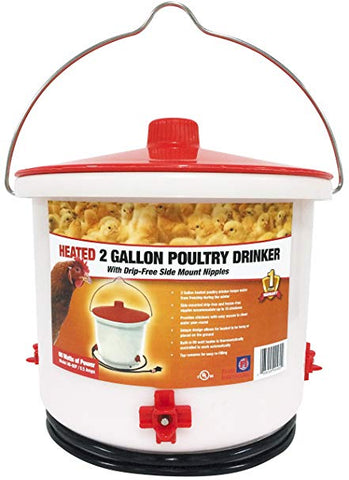Heated Poultry Drinker - 2 Gallon