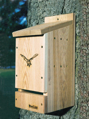 Cedar Bat Cottage