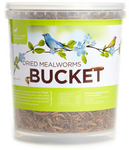 Dried Mealworms - 27Oz