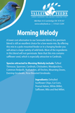 Morning Melody