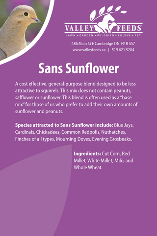 Sans Sunflower