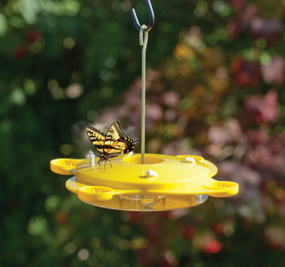 12 oz Plastic Butterfly Feeder