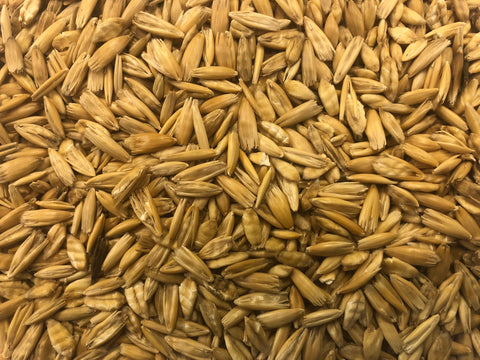 Premium Steam Crimped Oats 25kg