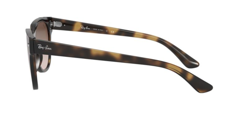 RAY-BAN Blaze Meteor Tortoise - Brown Gradient Sunglasses