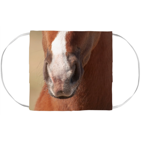 Foal Face Mask Cover