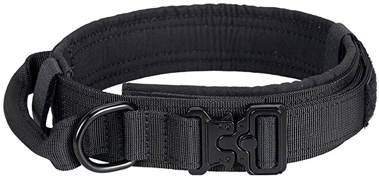 Which is the best tactical dog collar?