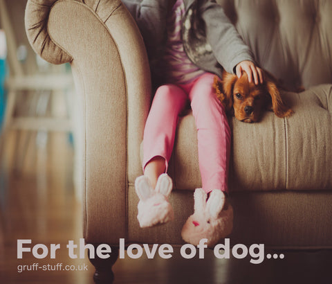 For the love of dog blog image