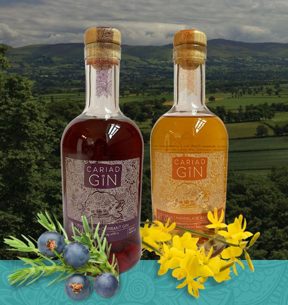 North Wales is the place for outstanding gin! | Clwydian Range Distillery