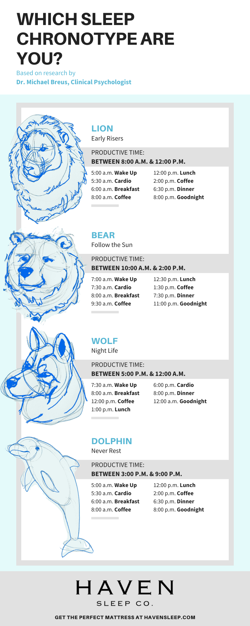 Optimal schedule for each sleep chronotype lion bear wolf dolphin peak productivity