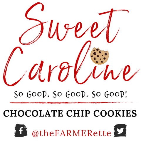 Sweet Caroline's Chocolate Chip Cookies: MINI BAG