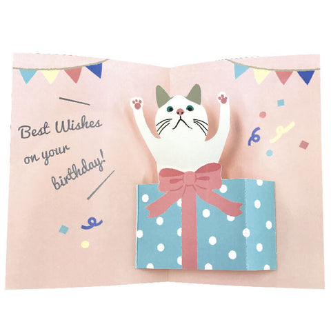 Pop-up Birthday Card - White Cat