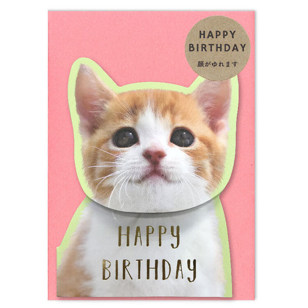 Coil Spring Birthday Card - Cat