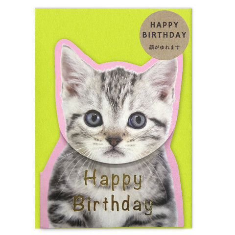 Coil Spring Birthday Card - Tabby Cat