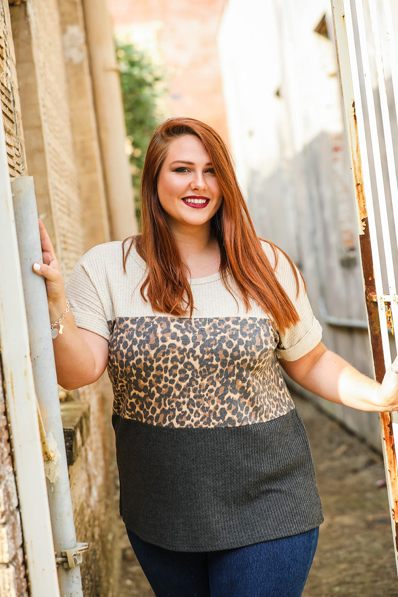 Color Block Leopard Top (Plus Size) - Combo