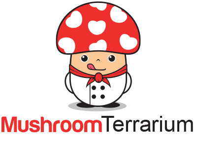 mushroomterrarium