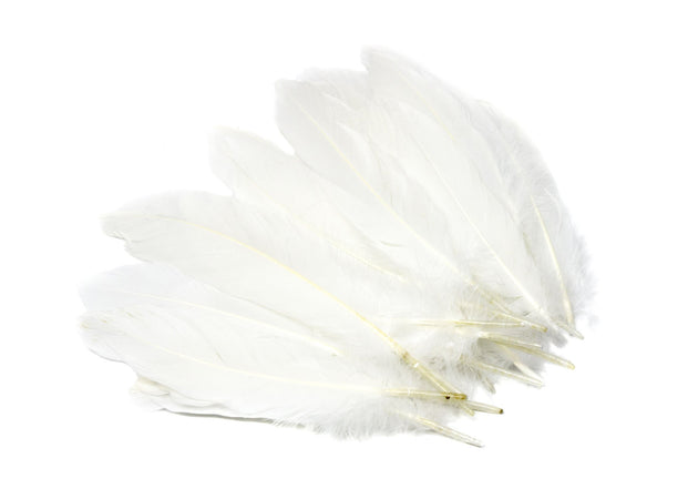 "Goose Nagoire Feathers 6"" - 8"", Hand Counted - Humboldt Haberdashery"