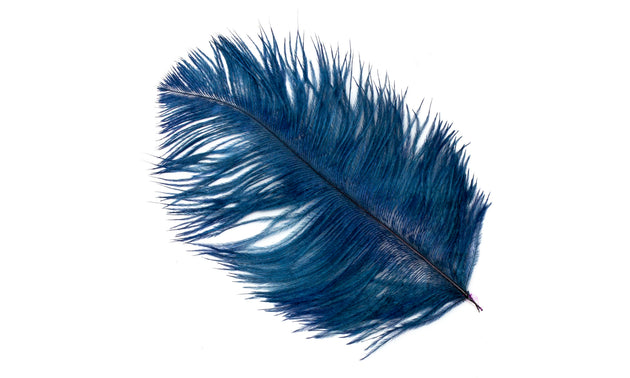 "Ostrich Feather Plumes 12"" - 14"" Long - 10 Pieces - Humboldt Haberdashery"
