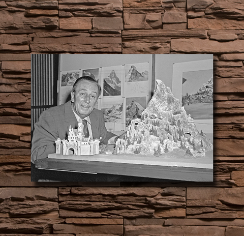 Walt Disney Photograph - 0082