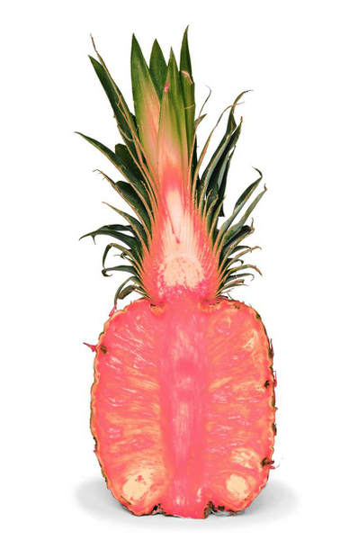 Rosé Pineapples!! Coming Soon!