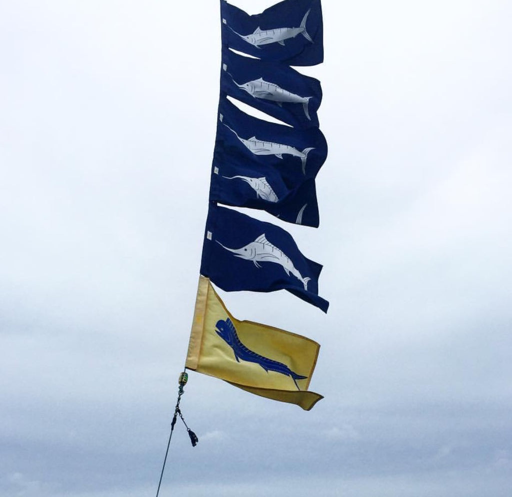 Simple and classic fish flag designs are recognized world wide