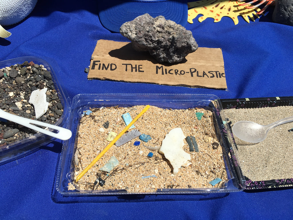 Find the micro plastic activity