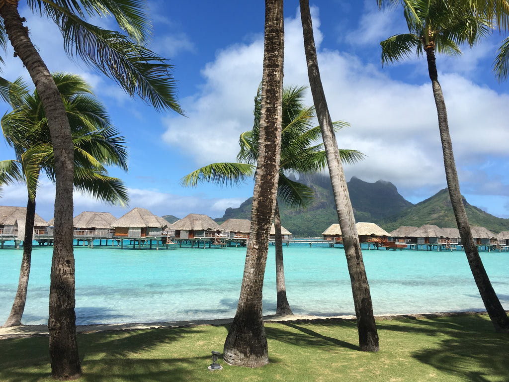 Bungalow life bora bora four seasons