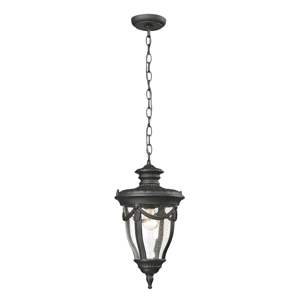 Anise Collection 1 light outdoor pendant in Textured Matte Black