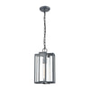 Bianca 1-Light Hanging in Aged Zinc with Clear