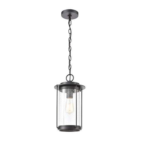 Devonshire 1-Light Hanging in Matte Black with Seedy Glass