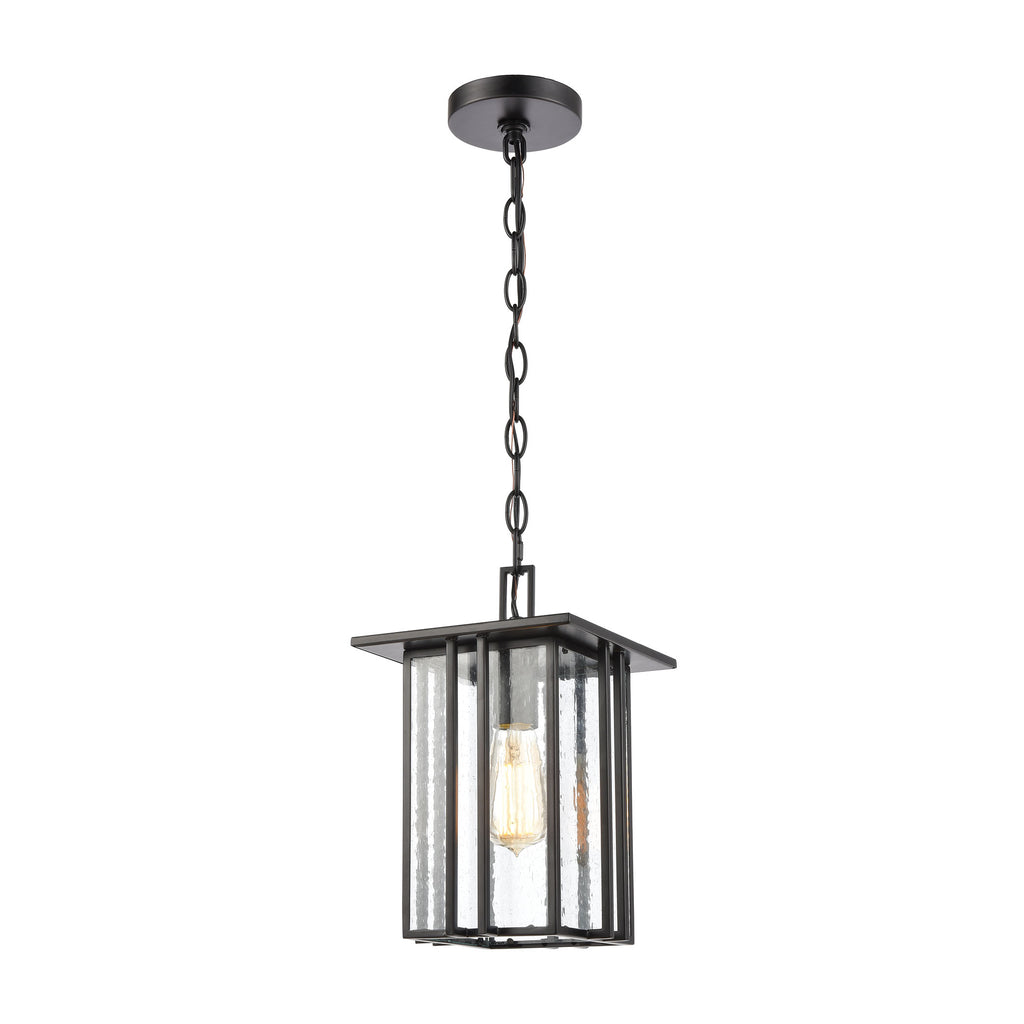 Radnor 1-Light Hanging in Matte Black with Seedy Glass