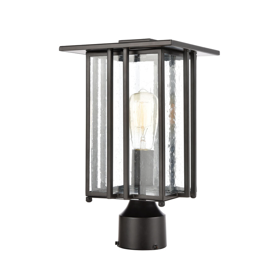 Radnor 1-Light Post Mount in Matte Black with Seedy Glass