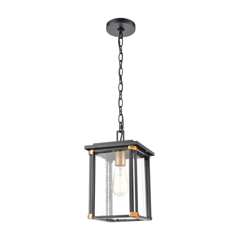 Vincentown 1-Light Hanging in Matte Black with Seedy Glass