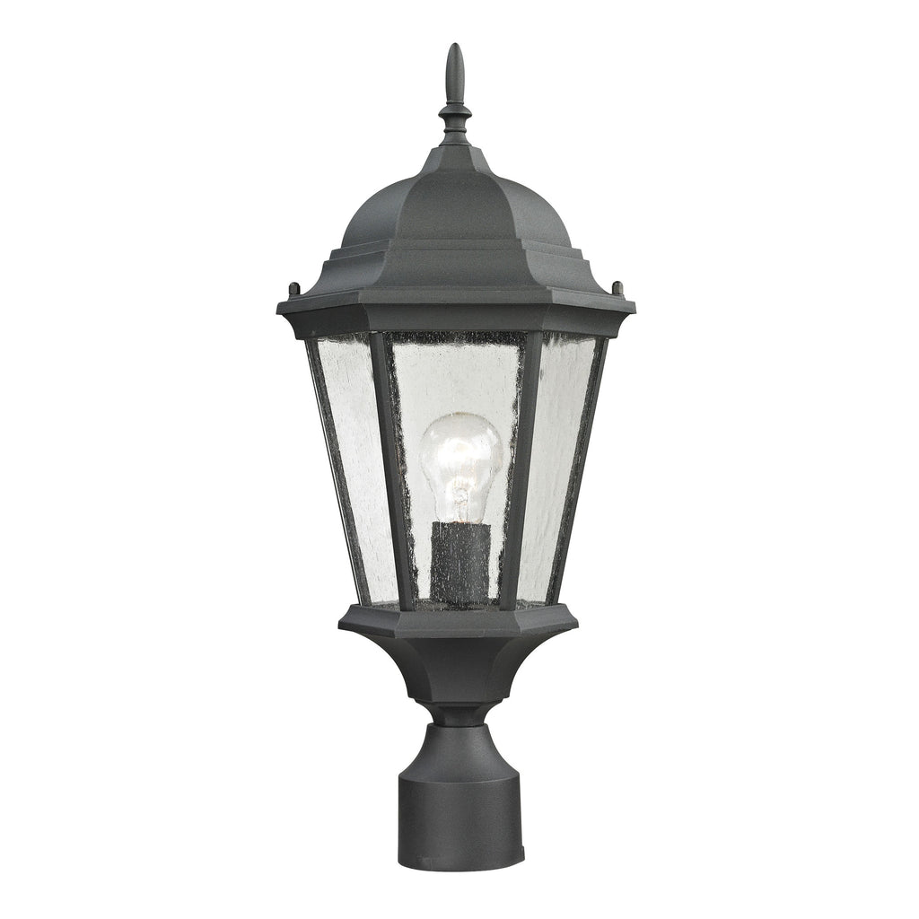 Temple Hill 1 Light Outdoor Pendant In Matte Textured Black