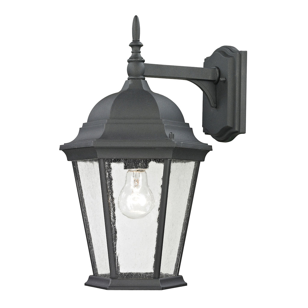Temple Hill 1 Light Outdoor Wall Sconce In Matte Textured Black