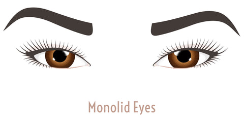Monolid Eyes do not have a crease when the eye is open.