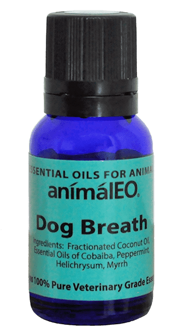 Dog Breath essential oil