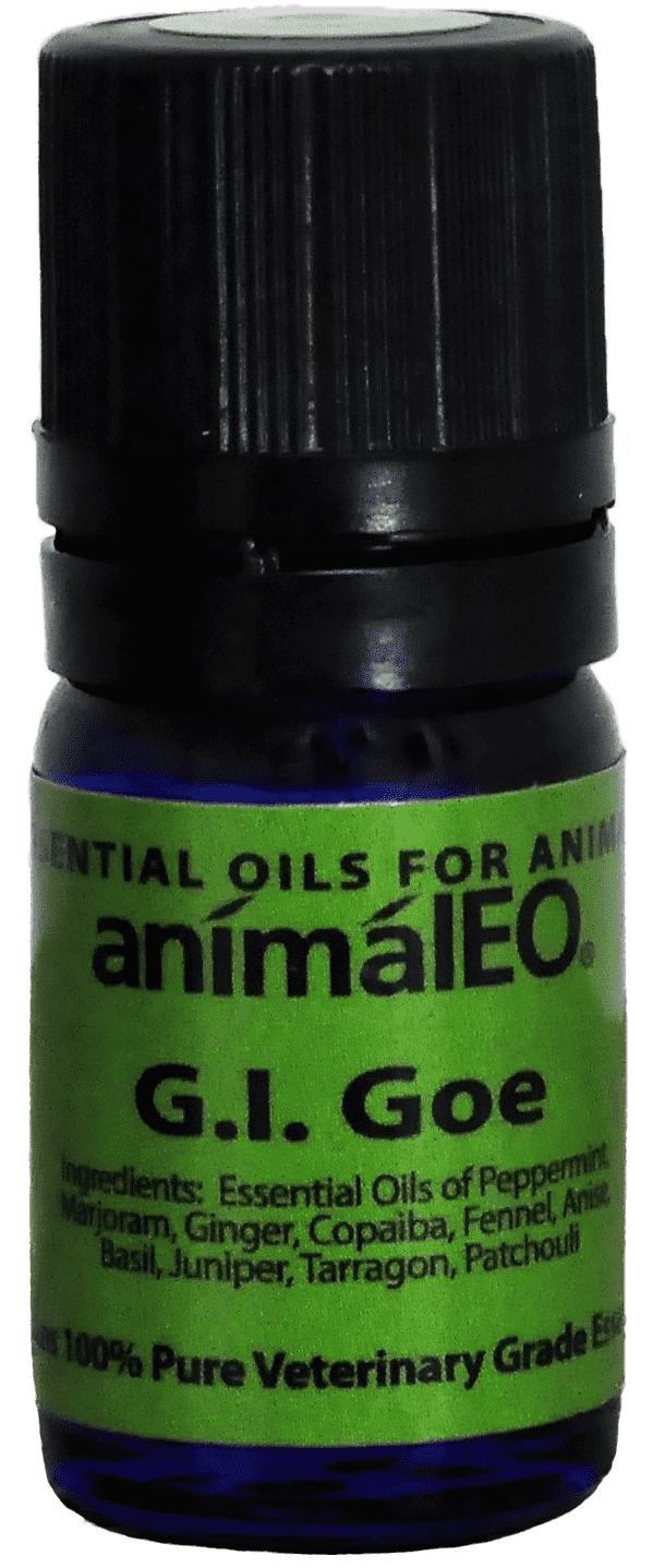 G.I. Goe is great for intestinal concerns